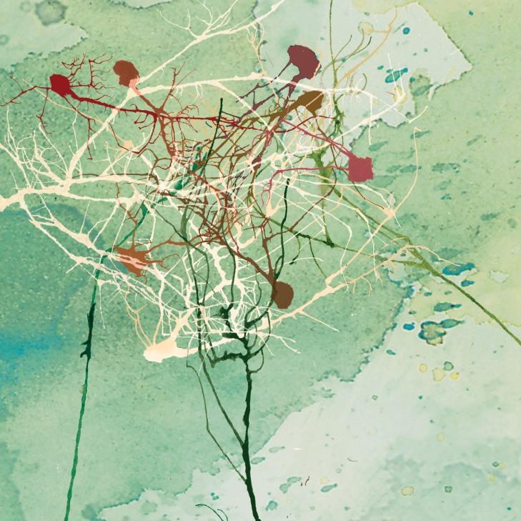 neuroscienze-arte